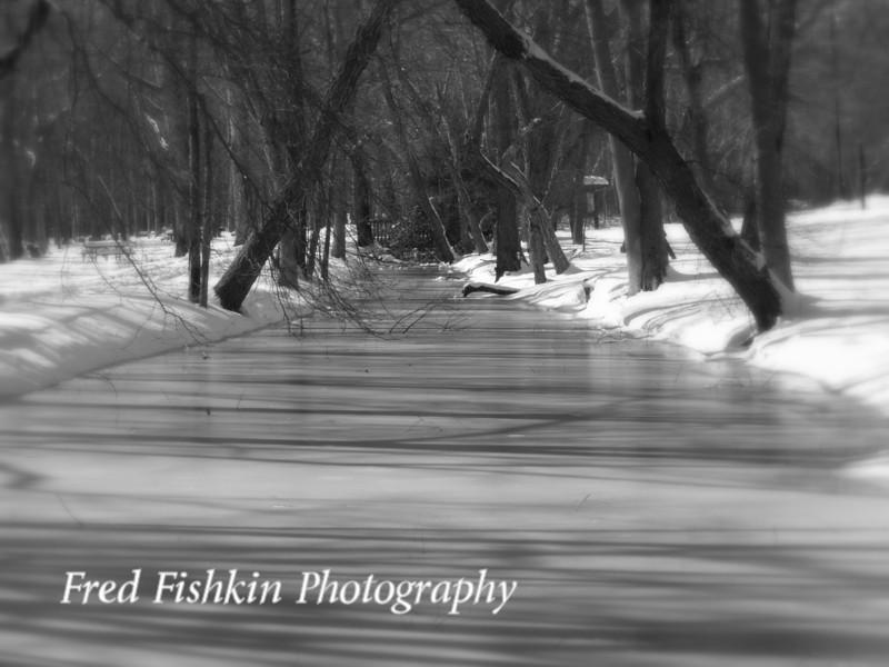 icy creek bw.jpg