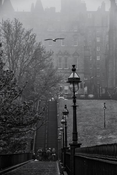 stairs in fog.jpg