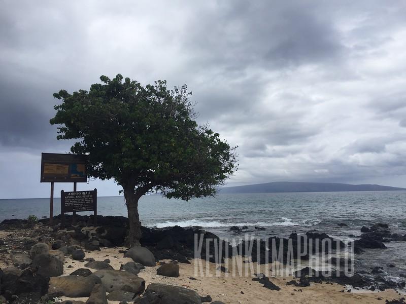 HawaiiPhonePics-448.JPG