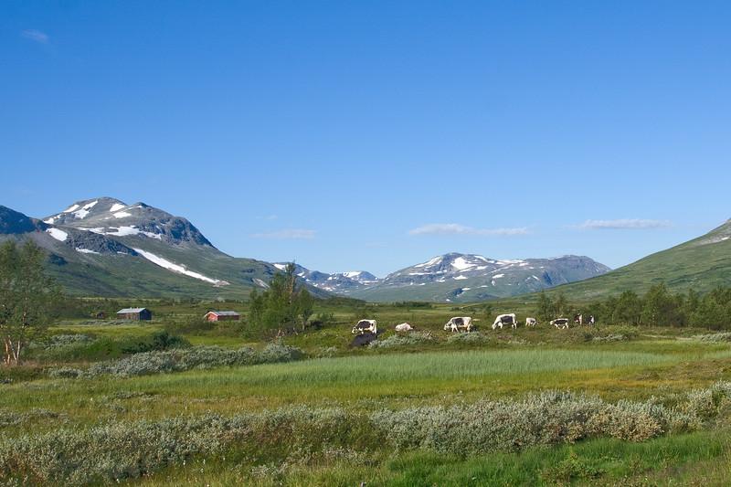 Trøndelag 08-163
