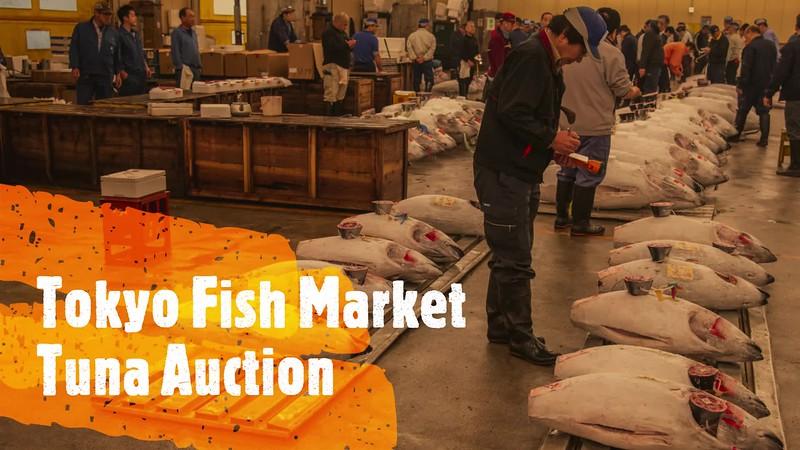 Tokyo Fish Market_Large.mp4