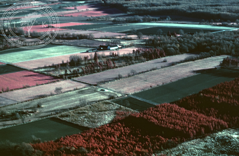 Landscape with agriculture and forestry in the area between Eljaröd, Brösarp and Andrarum. Experimentally photographed with infrared film and Kodak Wratten gelatin filter No: 12 & 25 (2 April, 1989). | LH.0356