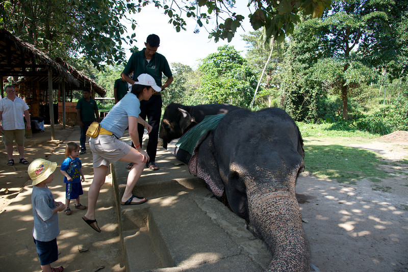 Time to ride an Elephant at Millennium Elephant Foundation, Kegalle, Sri Lanka. Dags att rida på en elefant vid, Millennium Elephant Foundation, Kegalle, Sri Lanka.