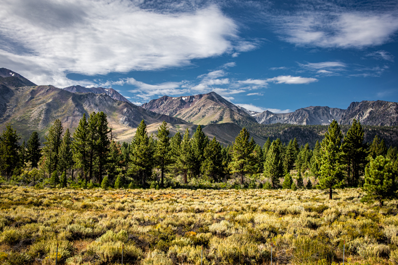 September 2 - Sherwin Mountains with morning summer clouds, Mammoth Lakes, CA.jpg