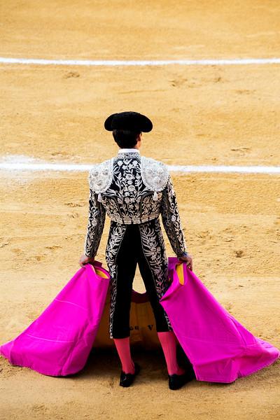 Bullfight4.jpg