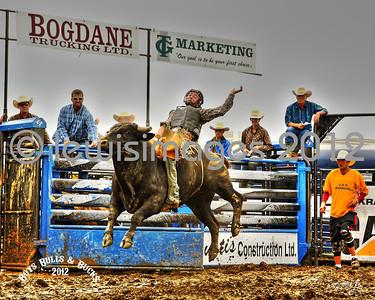 Boys, Bulls & Bucks - HDR Gallery