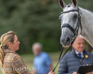 2018-09-12 Ssangyong Blenheim Palace Horse Trials