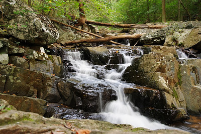 Gunpowder Falls State Park