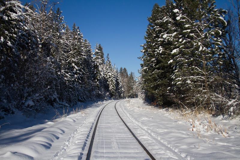 winter 2015-9819.jpg