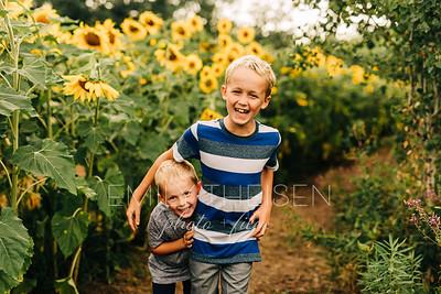 Swenson Sunflower Mini