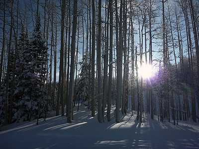 2011-01-Snowboarding