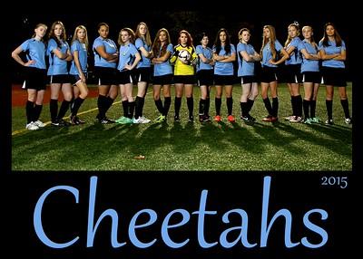 Cheetahs Soccer 2015