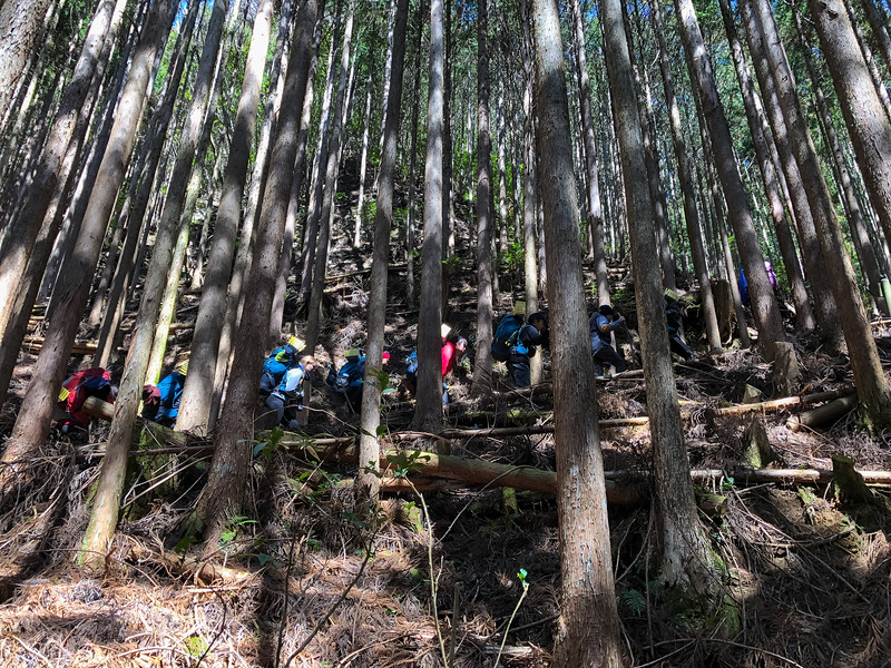 Grade 11 Expedition-Japan on Foot-IMG_0780-2018-19.jpg