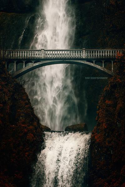 Portland_5313WEB2.jpg
