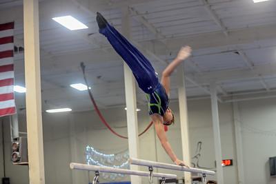 2017 Metropolitan Boys Gymnastics