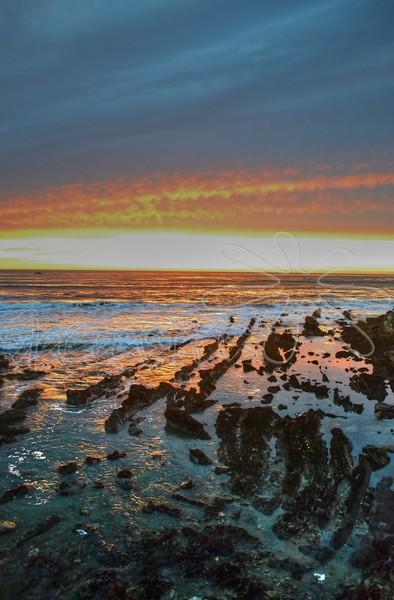 Shell Beach_28