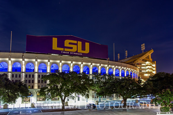 LSU Supports the Blue