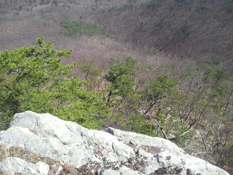 2012-03-17 13.13.09.jpg