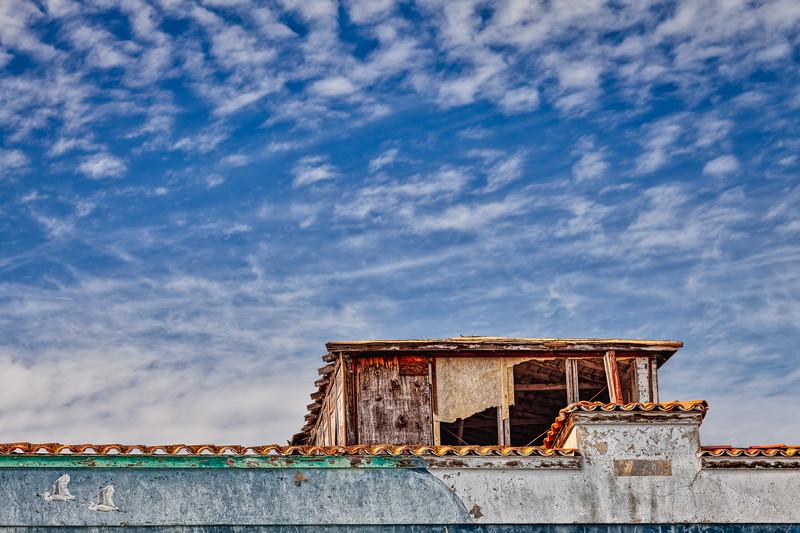 Roof, Bayside Canning Co., Alviso, California, 2010