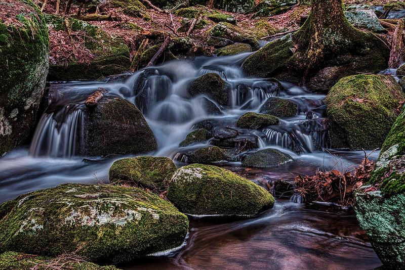 Cascade 3 Spring.jpg
