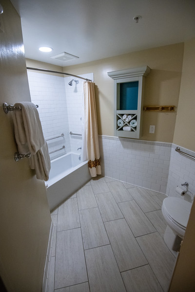Dinsey Resorts-2-743.jpg