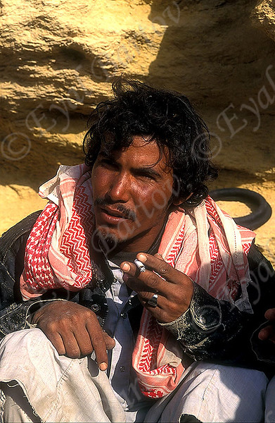 bedouin in Sinai.jpg