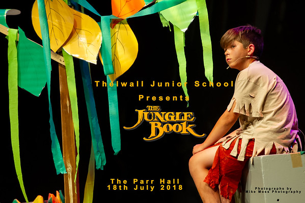 Thelwall Junior School - The Jungle Book