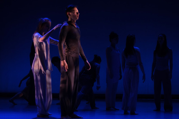 Dancers in Company 2014