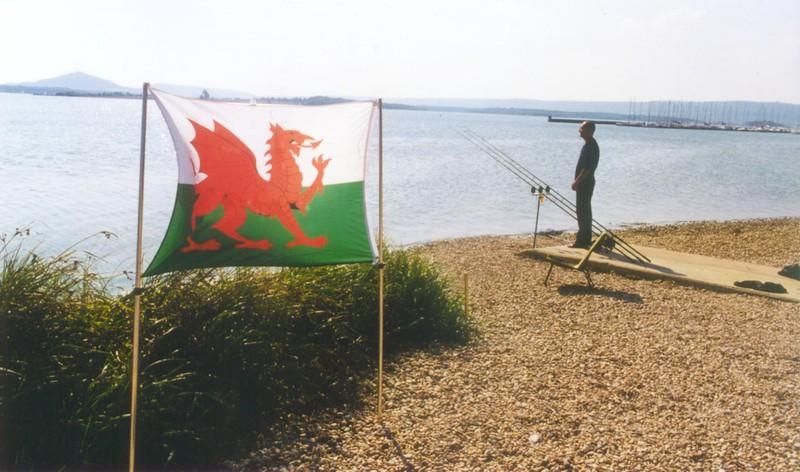 WCC99-Pic - Welsh flying flag