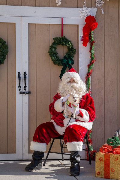 Pet Pictures With Santa-91.jpg