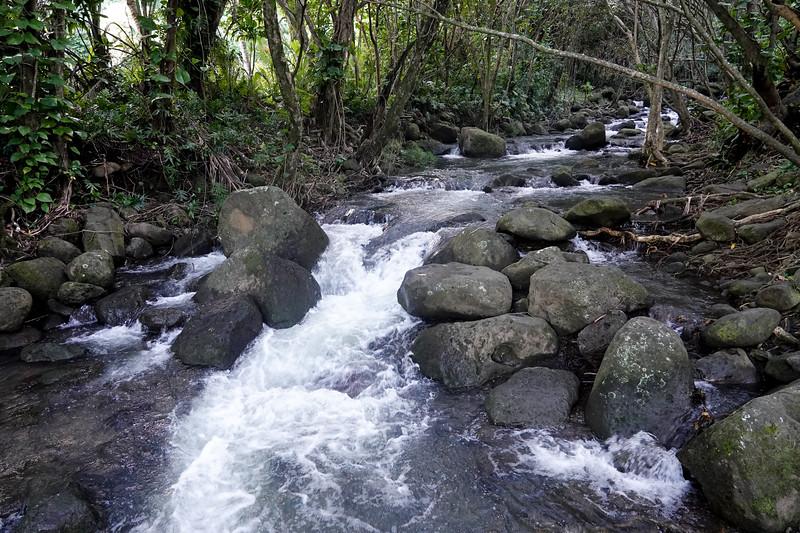 A roadside waterfall on the north shore of Kauai