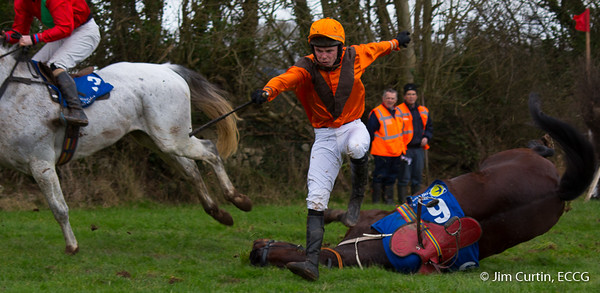 Ballyvodock Point to Point - 31/01/2016