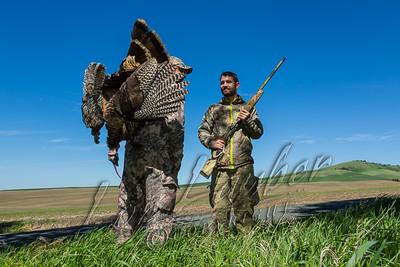 29005 Hunting Turkeys