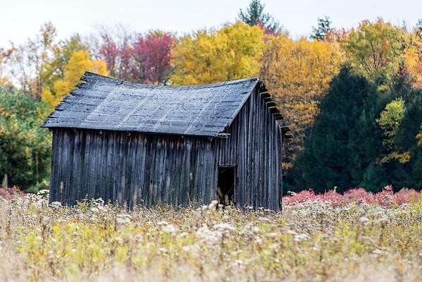 Abandoned Not Forgotten