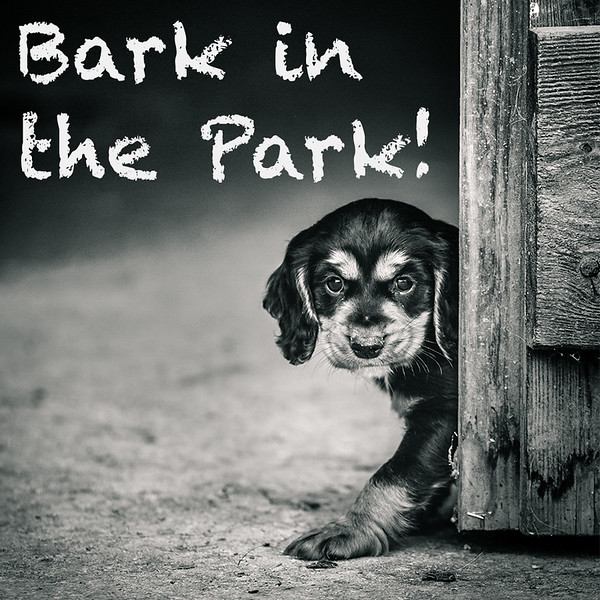 Bark in the Park.jpg