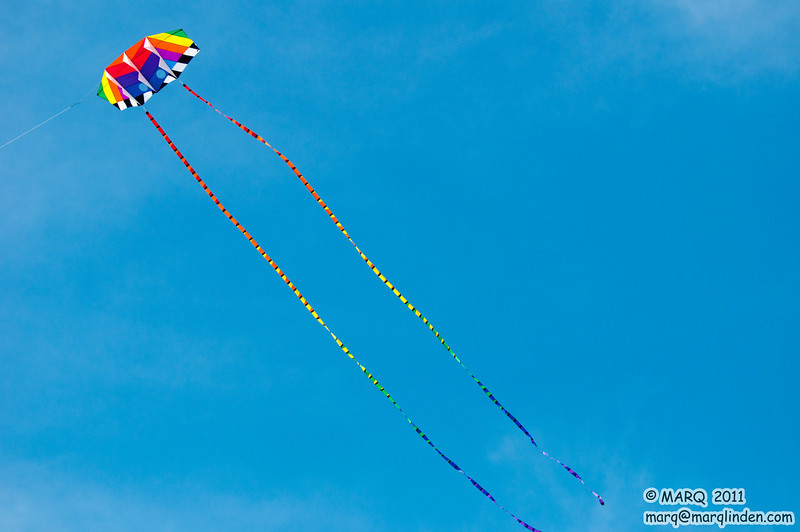 HB Kite Party 2011 #18
