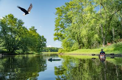 Wallkill River - July 12, 2019