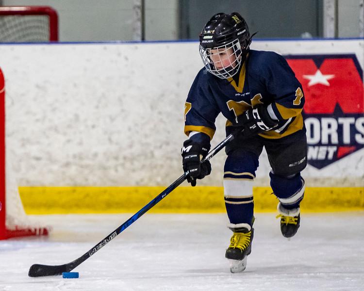 2019-02-03-Ryan-Naughton-Hockey-35.jpg