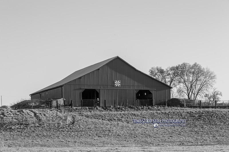 KC Landscape-57.jpg