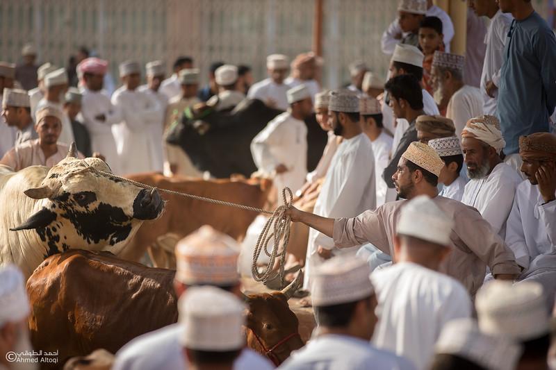 IMGL1618-Nizwa- Oman.jpg
