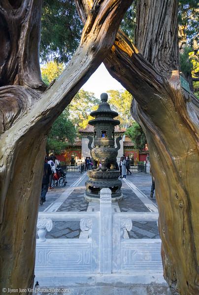 Forbidden City-2738.jpg