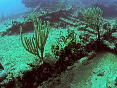 Dive BVI Scuba & Snorkel Wreck of the Rhone