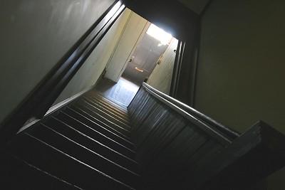 Tabby Apartment