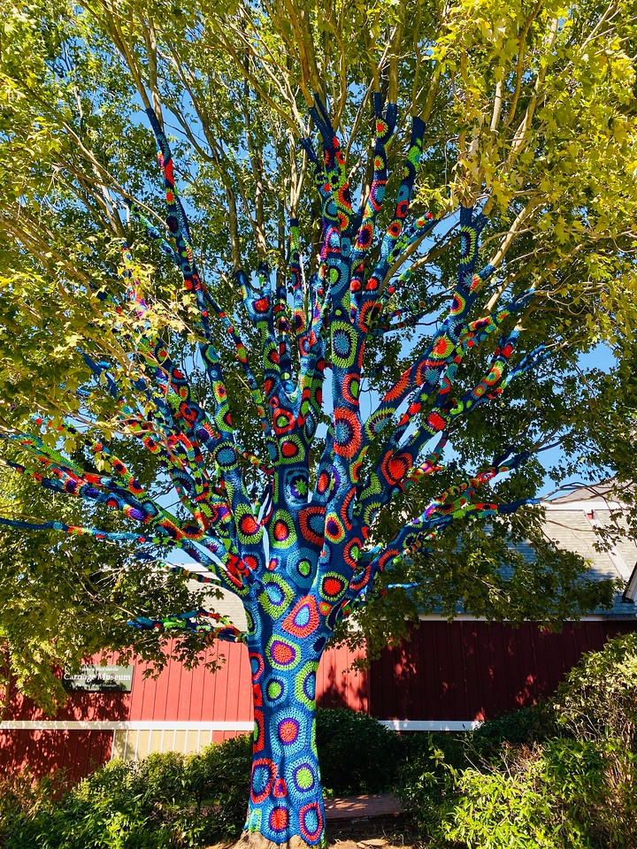 The prettiest Yarn-Bombed Tree on Long Island