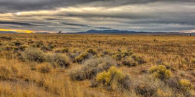 VLA New Mexico