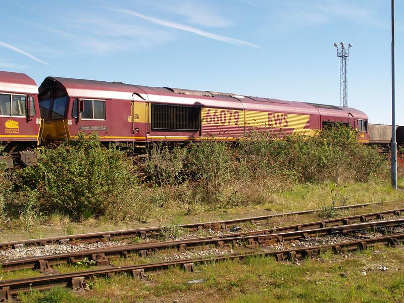 P4130046.JPG