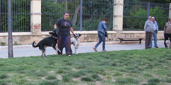 5 - 18 -  2010 Ayora Dog Park