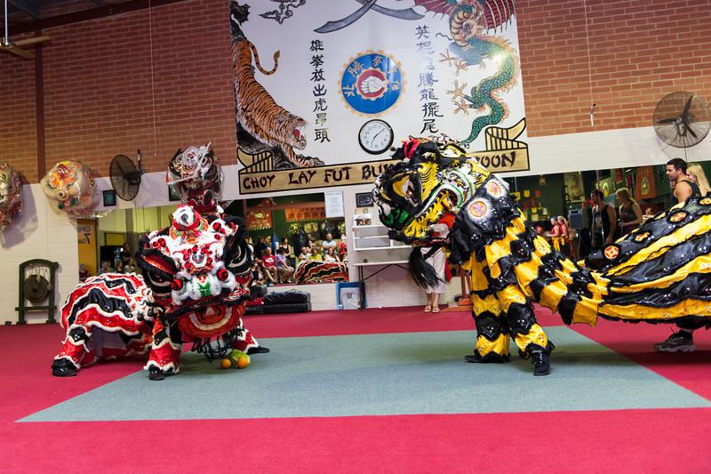 CNY 2014-54.jpg