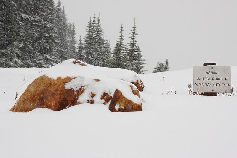 Snow in Paradise 15.JPG