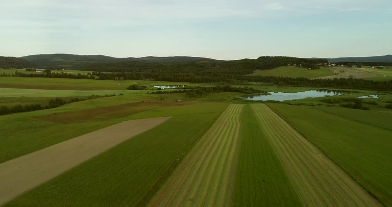 Aerial: rising flight over a mown meadow towards a lake and a village
